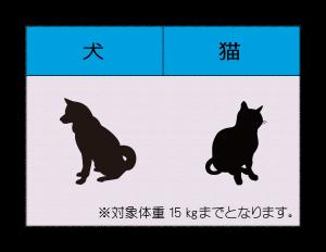 対象動物表